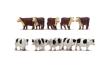 HORNR7121 - OO Scale - Cows