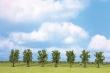 WALT949-1161 - Decidous Trees