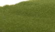 WOODFS613 - 2mm Static Grass - Dark Green